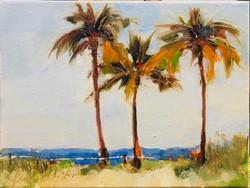 Tre Palme Bella Fort Lauderdale Beach