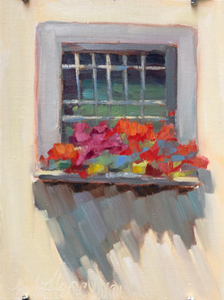 vicolo porta a lucca finestra pietrasant