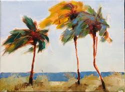 Tre Palme Fort Lauderdale Beach