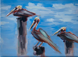 Pelicans on Pilings in Lantana