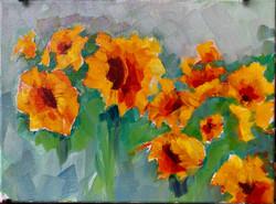 Bedner's Sunflowers Delray