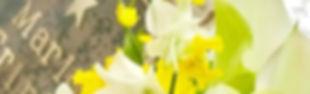 maria flower