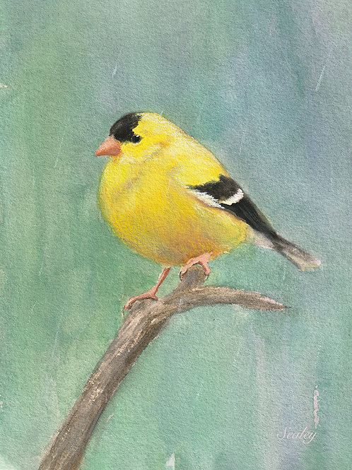 Goldfinch Digital Download