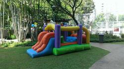 bouncy.jpg