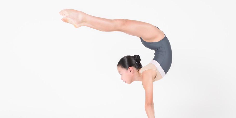 Basic Acrobatics