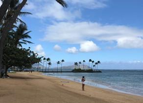 ハワイの今。。。。