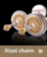 ATZEI C 2.jpg