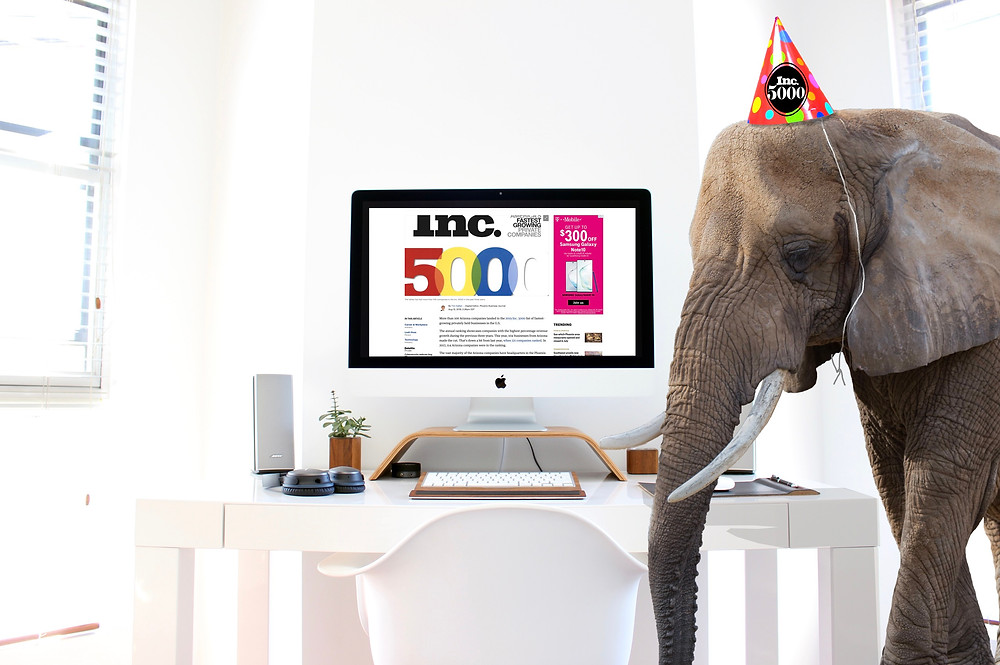 an elephant that represents adopt technologies is wearing a party hat with the inc 5000 logo standing in front of a computer with a screen capture of the news story announcing adopt being named to the list