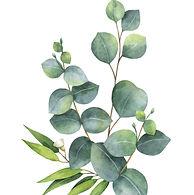 watercolor-bouquet-with-green-eucalyptus
