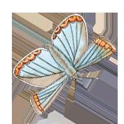 Butterflies 3.png