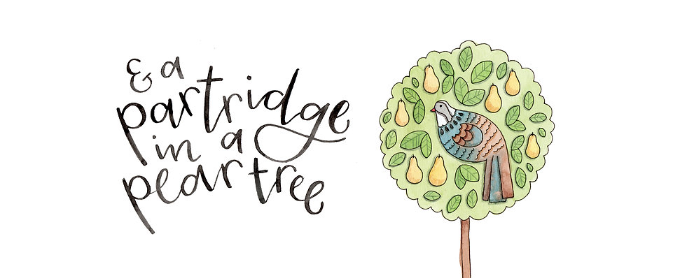 Nova & Me Partridge in a pear tree Card.jpg