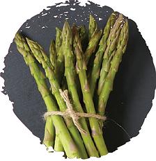 asparagus1.png