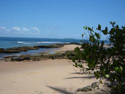 Ponta do Mutá (2)