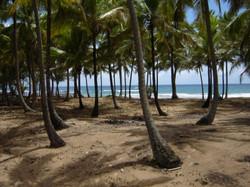 Nosso terreno na praia