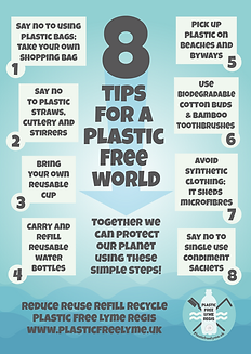 Plastic free advice