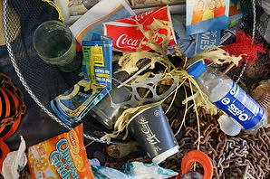 Rubbish from beach clean