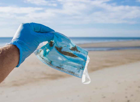 Alison's Blog: 5 ways to beat plastic pollution during the pandemic.