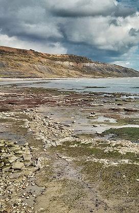 Lyme Regis low tide beach