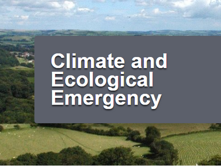 Climate Emergency Consultation
