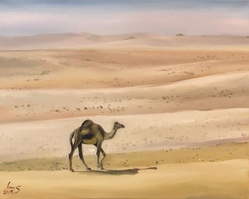 Arabian #31