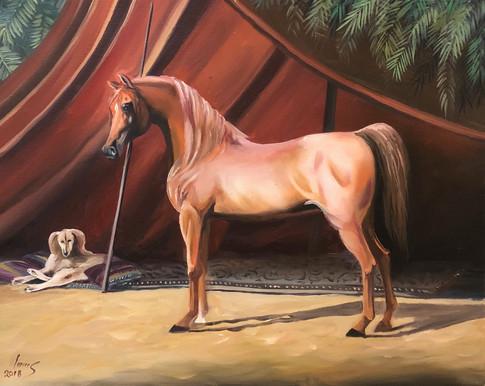 Arabian #29
