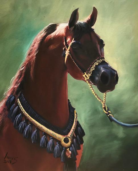 Arabian #25