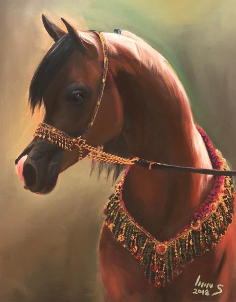 Arabian #24