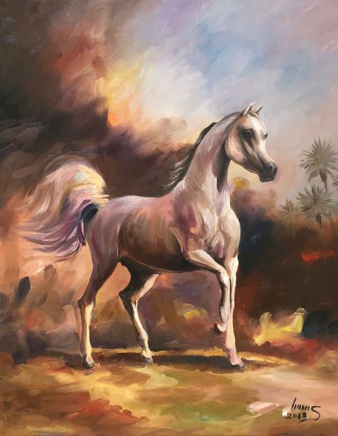 Arabian #23