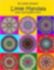 61gjpzwIcpL._SX384_BO1,204,203,200_.jpg