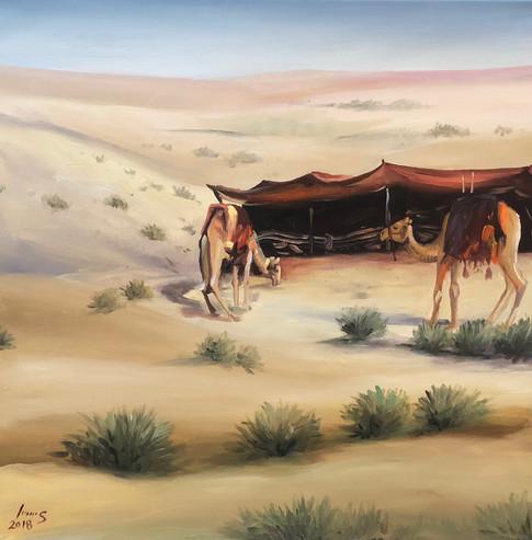 Arabian #41