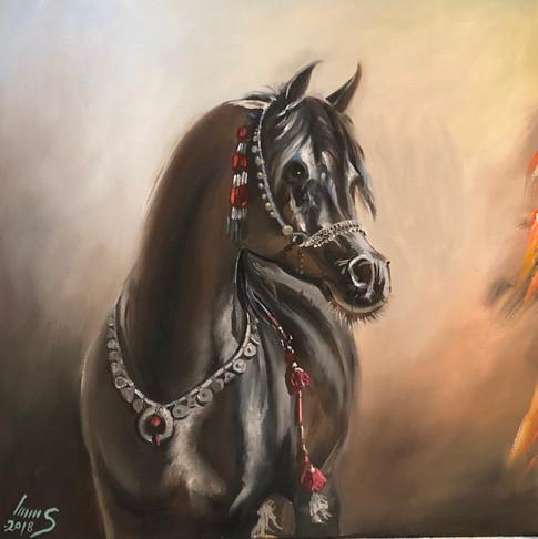 Arabian #40