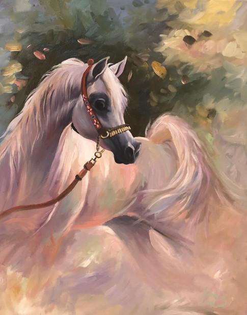 Arabian #22