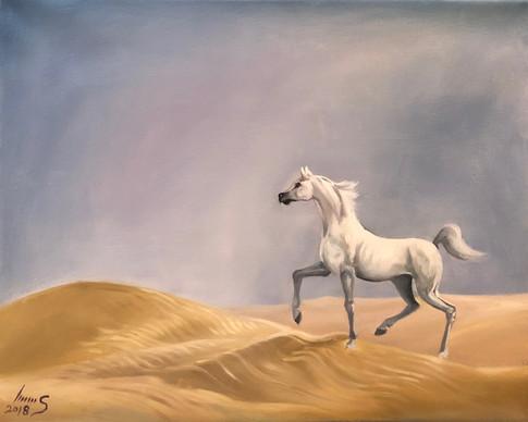 Arabian #32