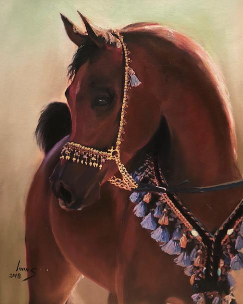 Arabian #26