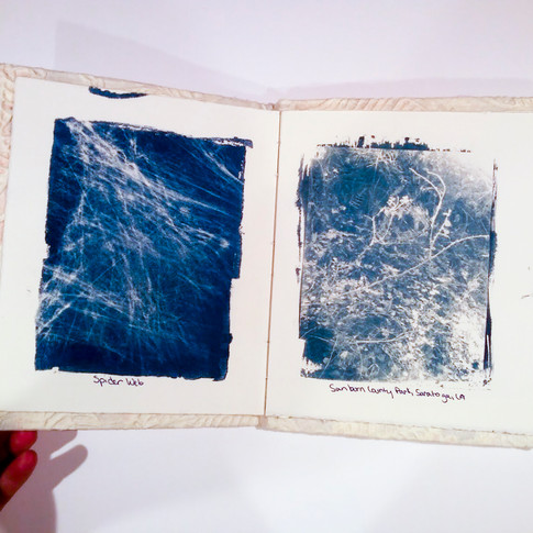 Cyanotype Book