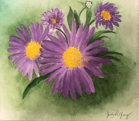 Purple Joy_4