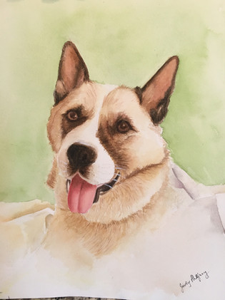Pet Portraits just for You_4