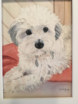 Pet Portraits just for You_2