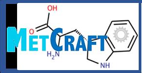 MetCraft Logo.png