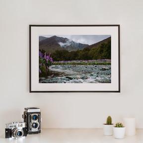 Fjordland | Neuseeland