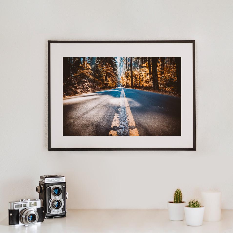 Roadtrip   Yosemite Nationalpark USA