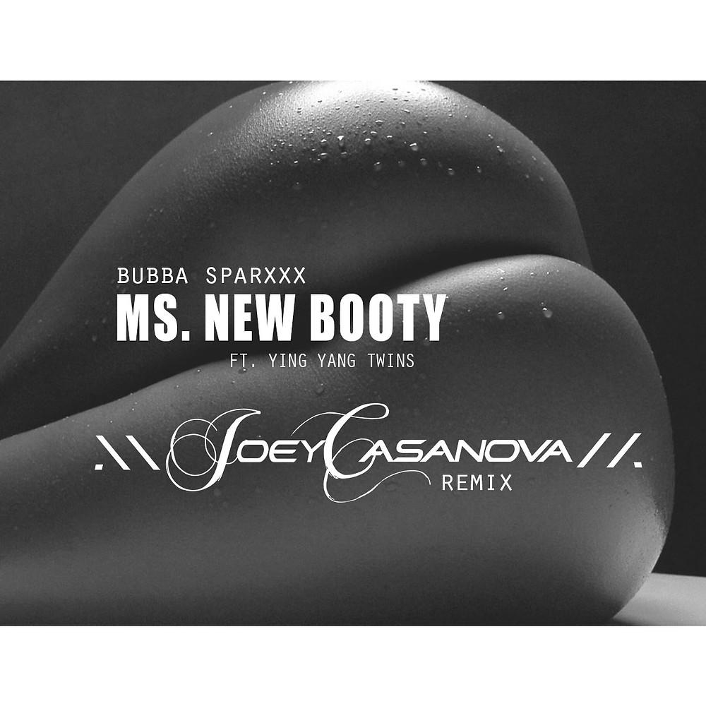 MS NEW BOOTY REMIX ARTWORK.jpg