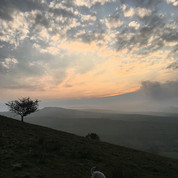 Views from Cracken Edge