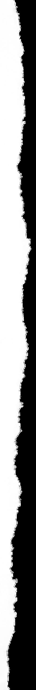 tornPAPER01_edited_edited_edited.png