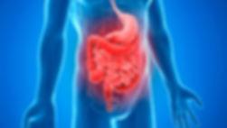 especialidades-gastroenterologia-600x340