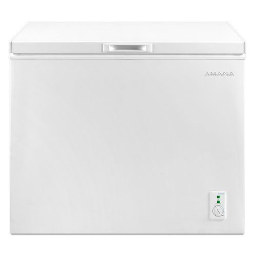 Amana 9.0 Cu. Ft. Compact Freezer With Flexible Installation (AQC0902GRW)