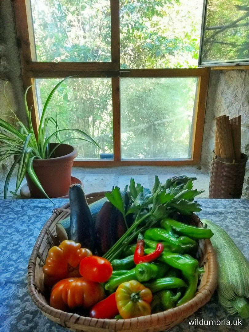 A welcome basket with our fresh garden produce