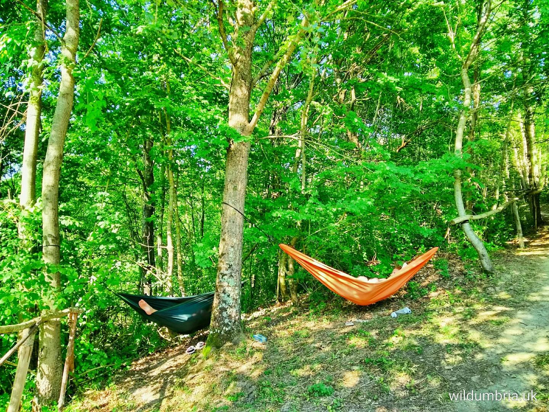 Relaxing in the hammocks.