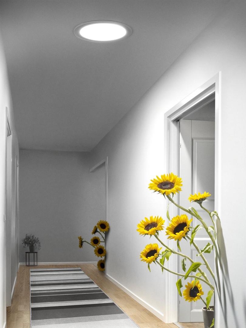 תעלת אור טבעי לתקרה שטוחה