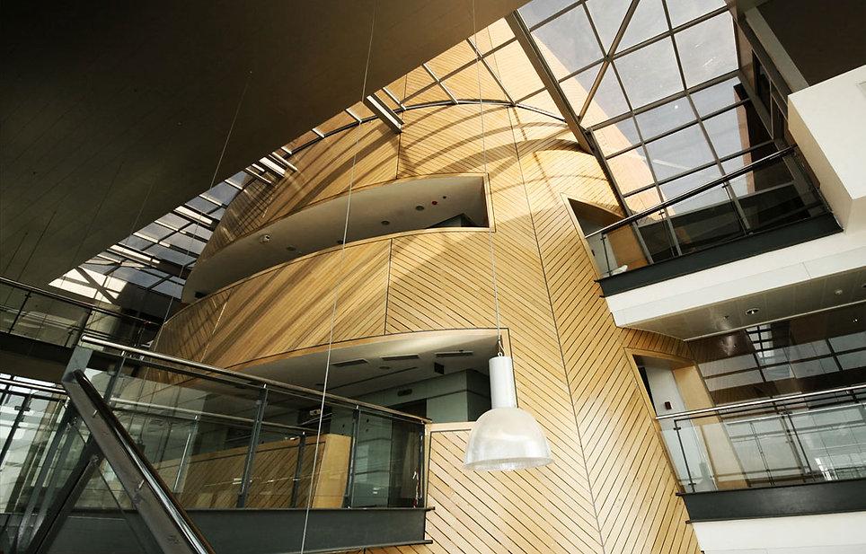 מבנה עץ עוף סקייליט